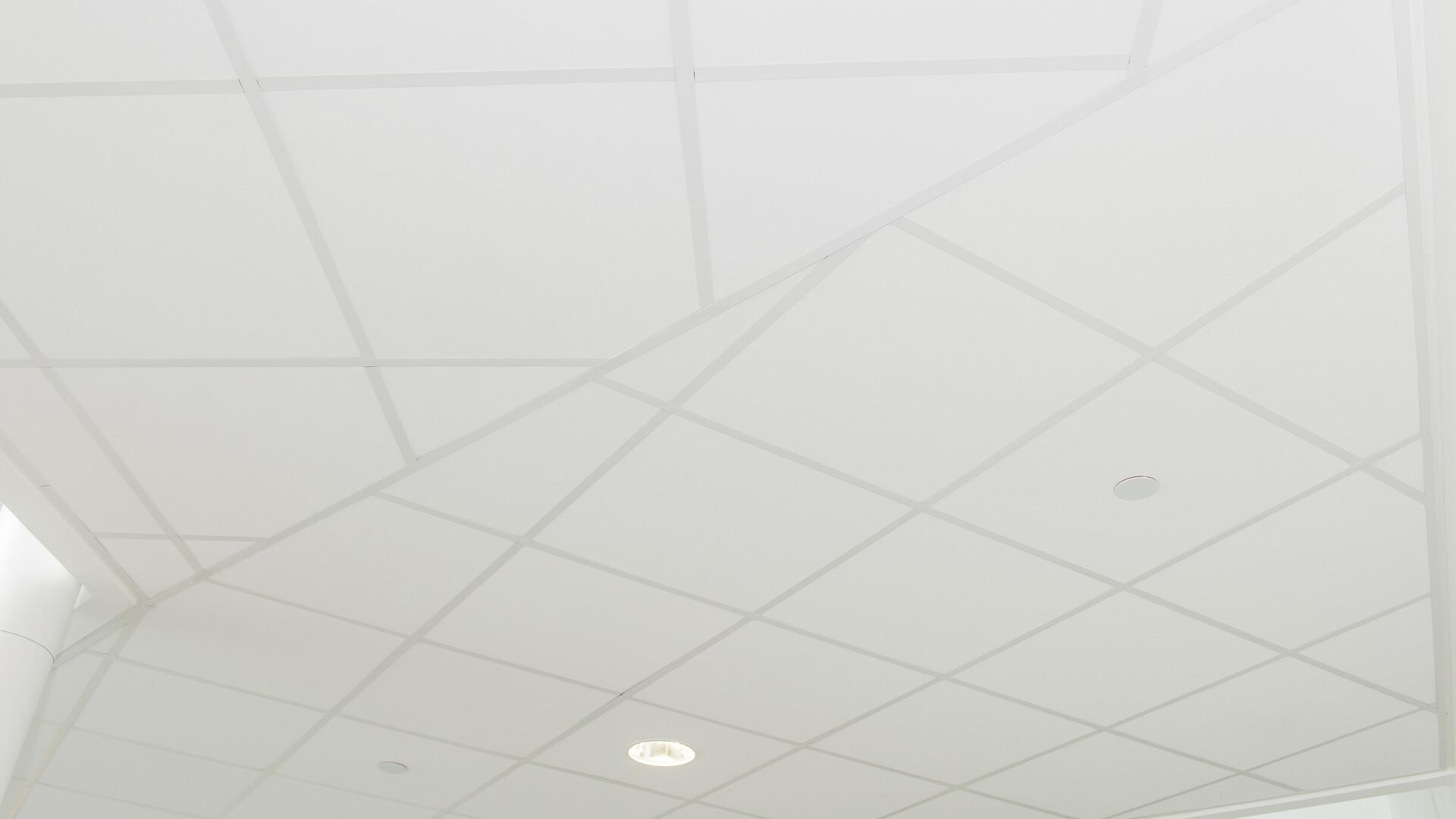 Produkter i billedet: Rockfon® Tropic™, A24, 600 x 600