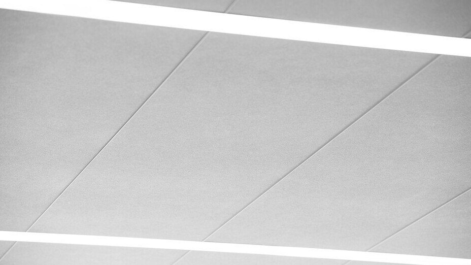 Landsarkivet i Lund,Lund,Sweden,Tage Möller Arkitektbyrå AB,Region Skåne,Lunds Universitet,Montagegruppen i Malmö AB,Svend Christiansen,ROCKFON Fusion Sonar,H-edge,1800x600,white