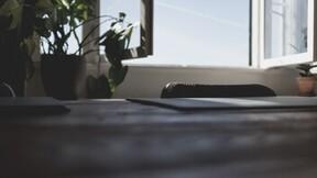 illustration, diffuse ventilation, office, desk, open windows, swivel chair, green plants, dark table